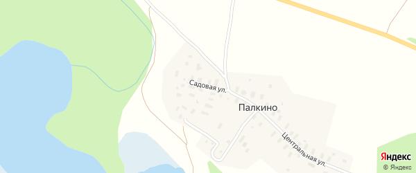 Садовая улица на карте деревни Палкино с номерами домов