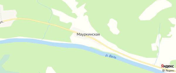 Карта Мауркинской деревни в Архангельской области с улицами и номерами домов