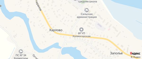 Луговая улица на карте деревни Харлово с номерами домов