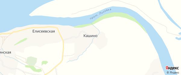 Карта деревни Кашино в Архангельской области с улицами и номерами домов
