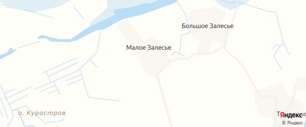 Карта деревни Малого Залесья в Архангельской области с улицами и номерами домов