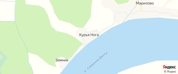Карта деревни Курьи Ноги в Архангельской области с улицами и номерами домов