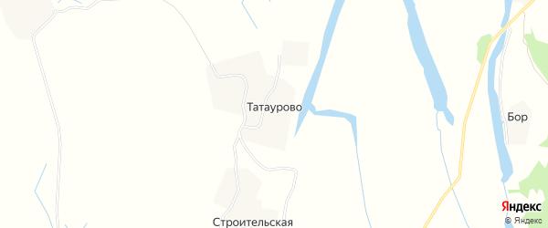 Карта деревни Татаурово в Архангельской области с улицами и номерами домов