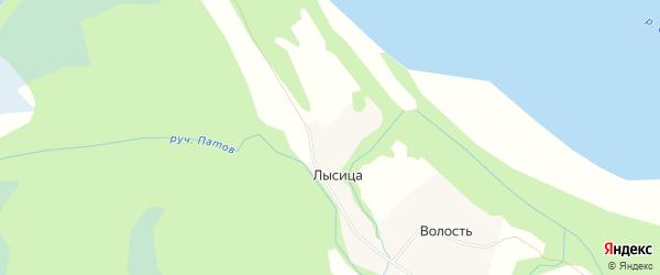 Карта деревни Лысицы в Архангельской области с улицами и номерами домов