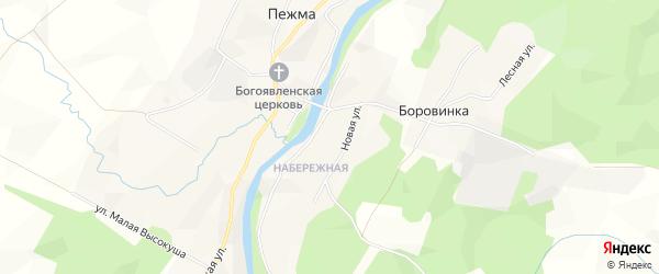 Карта деревни Боровинки в Архангельской области с улицами и номерами домов