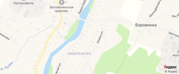 Центральная улица на карте деревни Боровинки с номерами домов