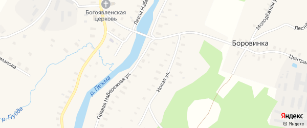 Лесная улица на карте деревни Боровинки с номерами домов