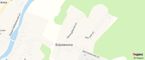 Молодежная улица на карте деревни Боровинки с номерами домов