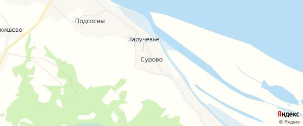 Карта деревни Сурово в Архангельской области с улицами и номерами домов