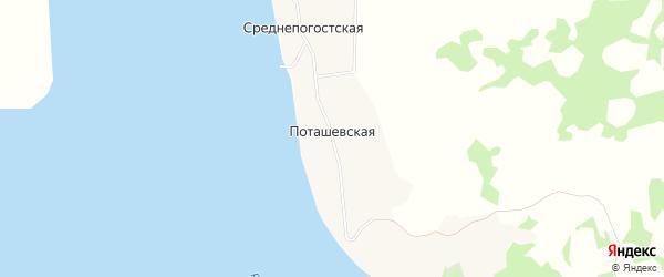 Карта деревни Поташевская (Луковецкий с/с) в Архангельской области с улицами и номерами домов