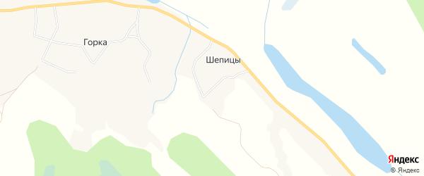 Карта деревни Шепицы в Архангельской области с улицами и номерами домов