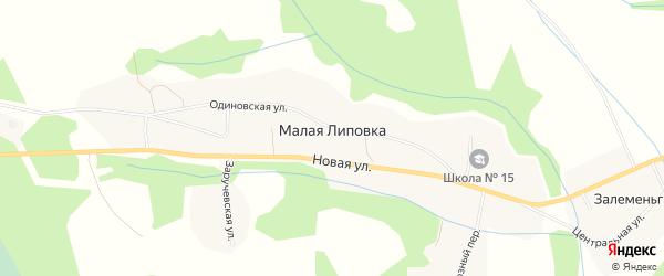 Карта деревни Малой Липовки в Архангельской области с улицами и номерами домов