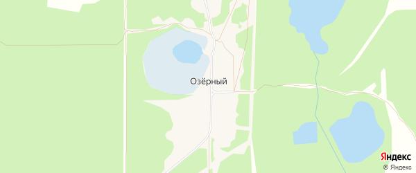 Карта Озерного поселка города Выксы в Нижегородской области с улицами и номерами домов