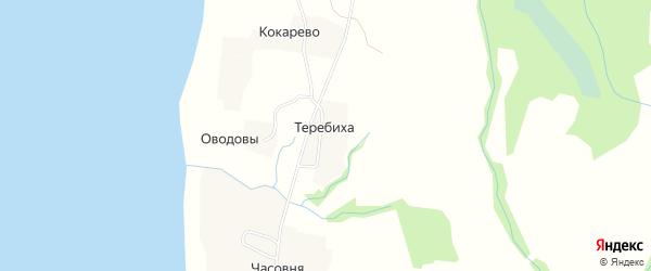 Карта деревни Теребихи в Архангельской области с улицами и номерами домов