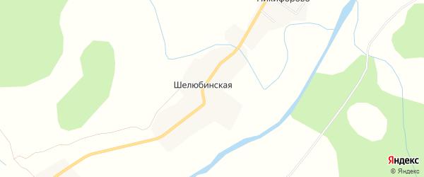Карта Шелюбинской деревни в Архангельской области с улицами и номерами домов