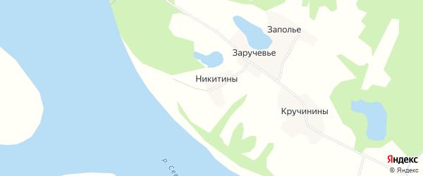 Карта деревни Никитины в Архангельской области с улицами и номерами домов