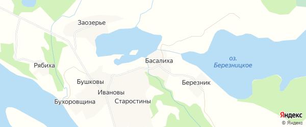Карта деревни Басалихи в Архангельской области с улицами и номерами домов