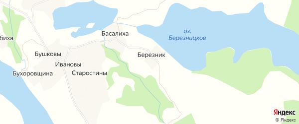 Карта деревни Березник (Хаврогорский с/с) в Архангельской области с улицами и номерами домов