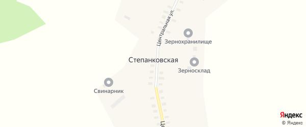 Центральная улица на карте Степанковской деревни с номерами домов