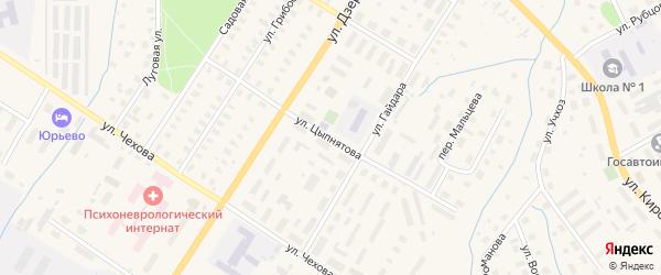 Улица Цыпнятова на карте Вельска с номерами домов