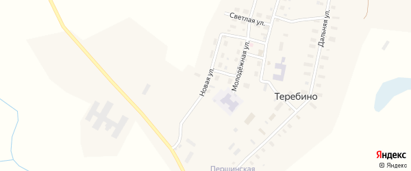 Новая улица на карте деревни Теребино с номерами домов