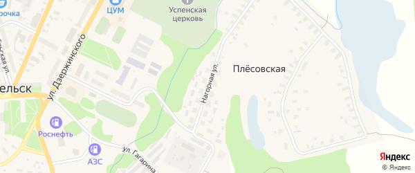 Нагорная улица на карте Плесовской деревни с номерами домов