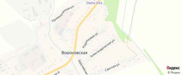 Родниковая улица на карте Вороновской деревни с номерами домов