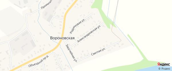 Александровская улица на карте Вороновской деревни с номерами домов