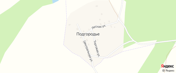 Центральная улица на карте поселка Подгородья с номерами домов