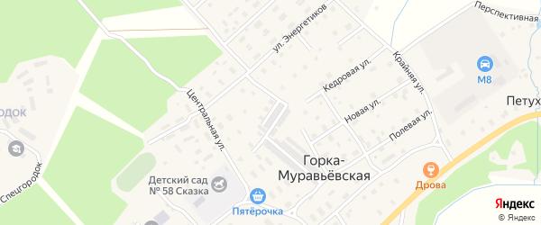 Соловьиная улица на карте Горка-Муравьевская деревни с номерами домов