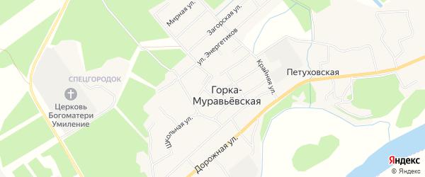 Карта Горка-Муравьевская деревни в Архангельской области с улицами и номерами домов