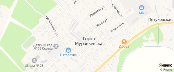 Сиреневая улица на карте Горка-Муравьевская деревни с номерами домов