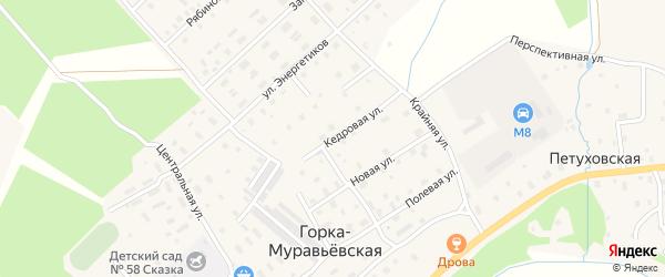 Кедровая улица на карте Горка-Муравьевская деревни с номерами домов