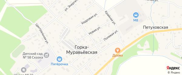 Цветочная улица на карте Горка-Муравьевская деревни с номерами домов