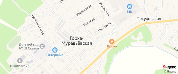 Полевая улица на карте Горка-Муравьевская деревни с номерами домов