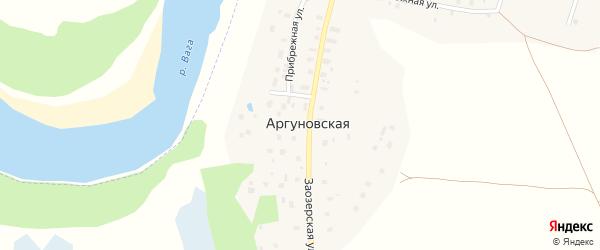 Прибрежная улица на карте Аргуновской деревни с номерами домов