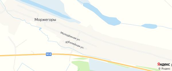 Карта Родионовской деревни в Архангельской области с улицами и номерами домов