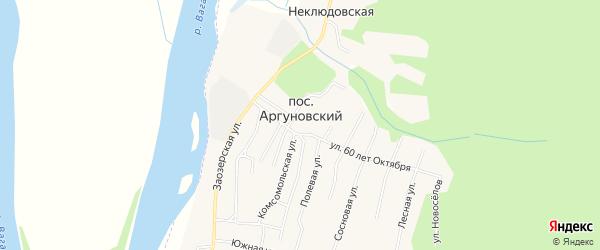 Карта Аргуновского поселка в Архангельской области с улицами и номерами домов