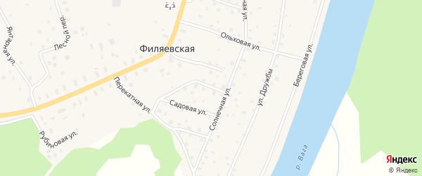Березовая улица на карте Филяевской деревни с номерами домов