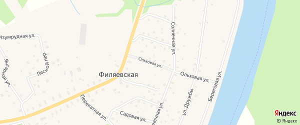 Ольховая улица на карте Филяевской деревни с номерами домов