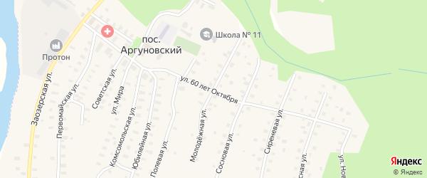 Молодежная улица на карте Аргуновского поселка с номерами домов