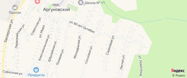 Сосновая улица на карте Аргуновского поселка с номерами домов