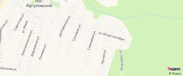 Сиреневая улица на карте Аргуновского поселка с номерами домов