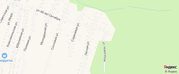 Лесная улица на карте Аргуновского поселка с номерами домов