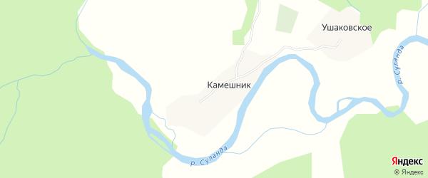 Карта деревни Камешника в Архангельской области с улицами и номерами домов