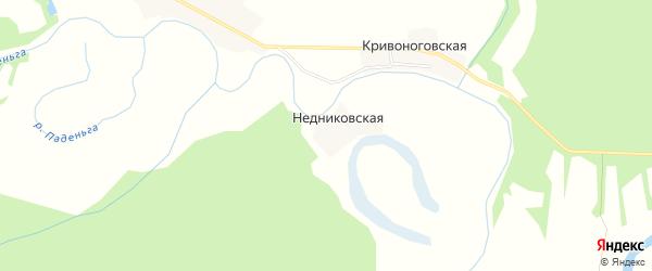 Карта Недниковской деревни в Архангельской области с улицами и номерами домов