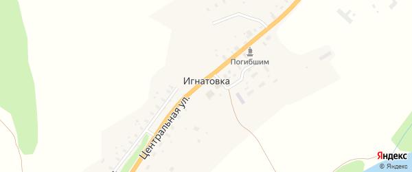 Важская улица на карте деревни Игнатовки с номерами домов