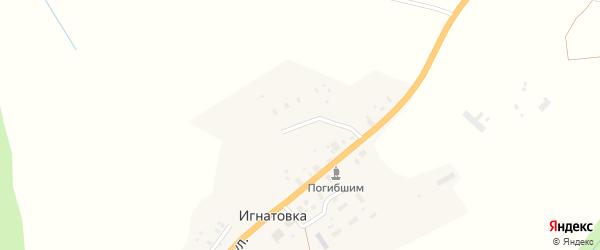 Полевая улица на карте деревни Игнатовки с номерами домов