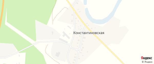 Территория Зерноток КХ Важское на карте Константиновской деревни с номерами домов