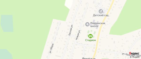 Лесная улица на карте села Ровдино с номерами домов